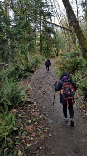 Increase your Legs and Core strenght.  Start with Walk. You can hike.  Hiking in woods. Pacific Northwest Adventures
